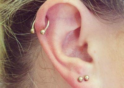 piercing orpington 1