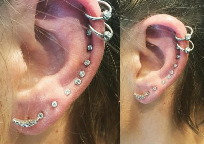 piercing orpington 10
