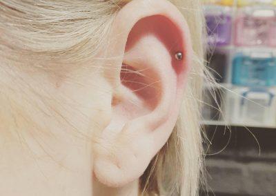 piercing orpington 33