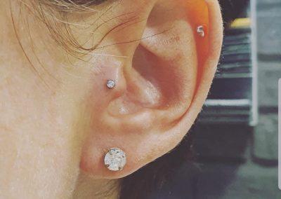 piercing orpington 40